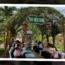 Thư viện Xanh trường THCS Tạ Thị Kiều